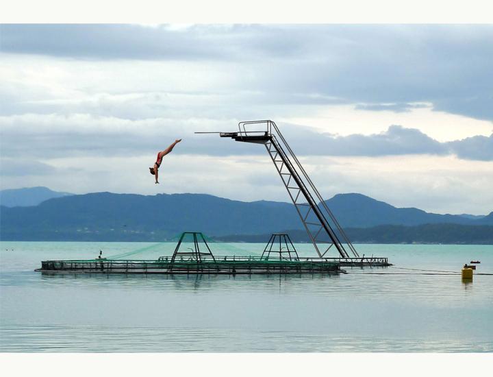 fishfarmpool